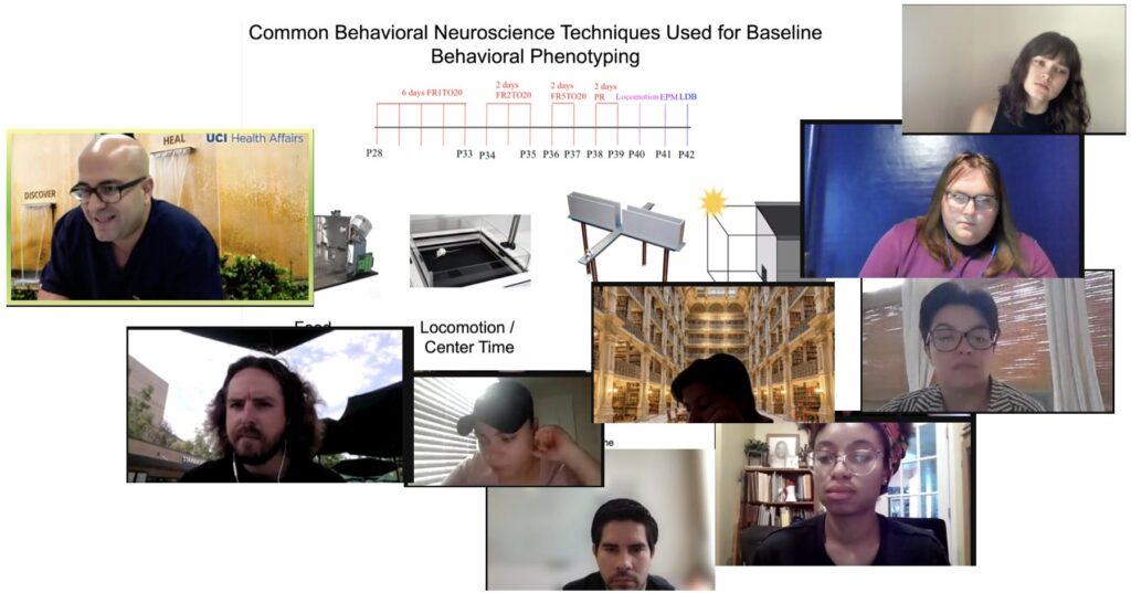 2021 Irvine Summer Institute in Neuroscience Lotfipour